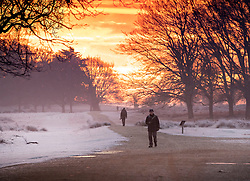 © Licensed to London News Pictures. 24/01/2019. London, UK. People walk in Richmond Park, West London on a cold winter morning, as temperatures across the UK drop dramatically. Some parts of the UK are expecting snowfall following a spell of low temperatures. Photo credit: Peter Macdiarmid/LNP