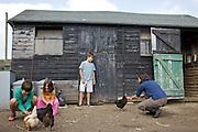 Edward, 12, Charlotte, 6 and Joseph, 12, feeding chickens in the chicken run at Hares Farm. CREDIT: Vanessa Berberian for The Wall Street Journal<br /> UKFARM-Hares Farm