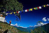 Chorten Nebu (temple) near Sirigang, Punakha Valley, Bhutan
