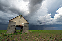 An old barn sits in the middle of a corn field outside of Eureka, Illinois, while stormy skies approach.<br />