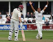 Somerset County Cricket Club v Warwickshire County Cricket Club 250413