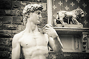 Copy of Michelangelo's David statue  at Palazzo Vecchio, Florence, Italy