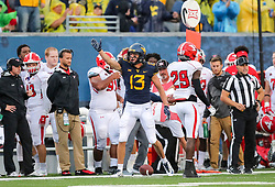 Sep 8, 2018; Morgantown, WV, USA; West Virginia Mountaineers wide receiver David Sills V (13) celebrates after catching a pass for a first down during the first quarter against the Youngstown State Penguins at Mountaineer Field at Milan Puskar Stadium. Mandatory Credit: Ben Queen-USA TODAY Sports