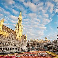 Belgium Portfolio