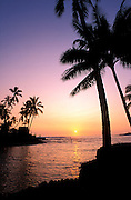Silhouetted palms and heiau at sunset, Pu'uhonua O Honaunau National Historic Park (City of Refuge), The Big Island, Hawaii USA