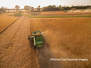 63801-09018 Soybean Harvest, 2 John Deere combines harvesting soybeans - aerial - Marion Co. IL
