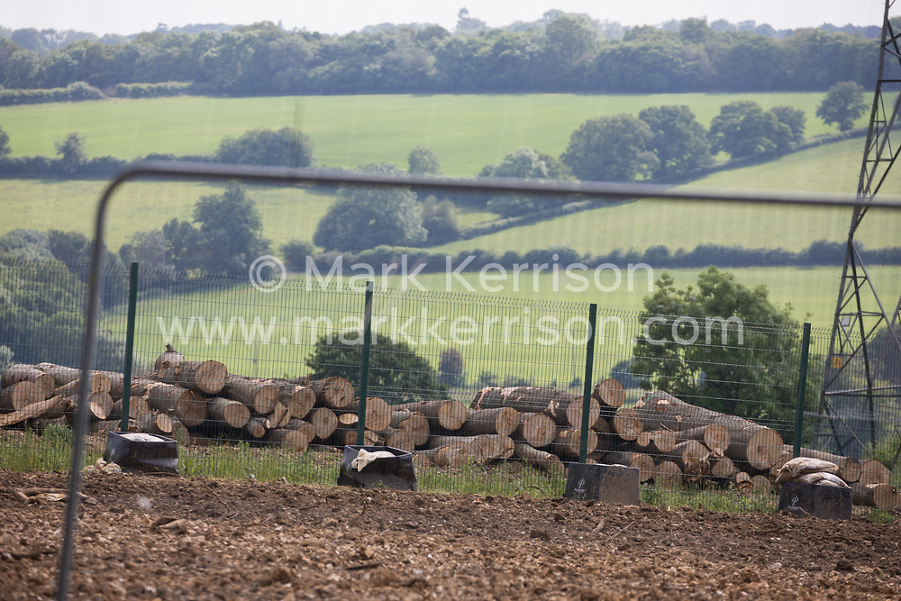 Wendover, UK. 16th June, 2021. Felled trees from ancient woodland at Jones Hill Wood in Buckinghamshire are pictured as works for the HS2 high-speed rail link continue. A large section of the ancient woodland, which contained resting places and/or breeding sites for pipistrelle, barbastelle, noctule, brown long-eared and natterer's bats, has now been entirely cleared of trees and vegetation by contractors working on behalf of HS2 Ltd.