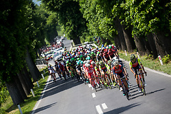 Peloton near Postojna during Stage 1 of 24th Tour of Slovenia 2017 / Tour de Slovenie from Koper to Kocevje (159,4 km) cycling race on June 15, 2017 in Slovenia. Photo by Vid Ponikvar / Sportida