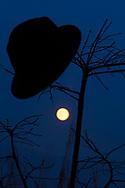 Un sombrero en primero plano con la luna llena al fondo en el cielo de Santiago de Compostela desde el Monte do Gozo<br /> <br /> A hat in foreground with the full moon in the background in the sky of Santiago de Compostela from the Monte do Gozo<br /> <br /> El encatamiento de la luna