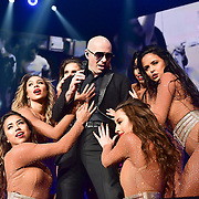 ALLENTOWN, PA - AUGUST 05:  Pitbull performs at PPL Center on August 5, 2016 in Allentown, Pennsylvania.  (Photo by Lisa Lake/Getty Images)