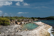 Coastal Scenery<br /> Slagbaai National Park<br /> BONAIRE, Netherlands Antilles, Caribbean<br /> HABITAT & DISTRIBUTION: Shallow & mid-range coral reefs, walls and rocky areas. <br /> Florida, Bahamas & Caribbean.