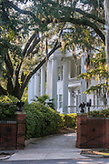 Large oak trees bathed in sun and long hanging southern moss frame the long standing Wise House on Market Street in Wilmington, NC.  The neoclassical<br /> style home at 1713 Market Street was owned by Jessie Kenan Wise and was donated to University North Carolina Wilmington after her death in 1968 and is now known as UNCW Wise Alumni House.  PHOTO BY:  JEFF JANOWSKI PHOTOGRAPHY