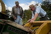 Old order Mennonite family cutting corn