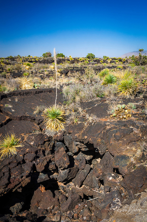 Lava tube on the Malpais Nature Trail, Valley of Fires Natural Recreation Area, Carrizozo, New Mexico USA