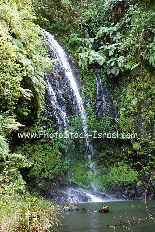 Madagascar, Amber National Park. Antankarana waterfall