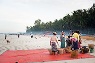 Myanmar, Ngapali. Women work segregating fish from the baskets.<br /> Every single morning all the fisherman from the little village at Ngapali Beach come back home with their night catch. At the beach all the women wait for them and afterwards work with drying and selling fish and other creatures from the sea begins.