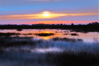 Early morning and the sun is burning through the fog over the salt marshes of the St. Marks National Wildlife Refuge in North Florida.