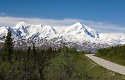 View towards the Wrangell St-Elias Mountains from along the Richardson Highway
