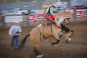 MT State Fair, Billings MT 2012