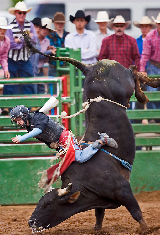 Bradley Kentch, riding with a broken arm in a cast gets tossed from his bull during the second day of the Utah High School Rodeo Championships at Heber, Utah Thursday June 8, 2006.  Kentch was not hurt on this ride. August Miller/ Deseret Morning News