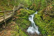 Dickson Falls and boardwalk<br />Fundy National Park<br />New Brunswick<br />Canada