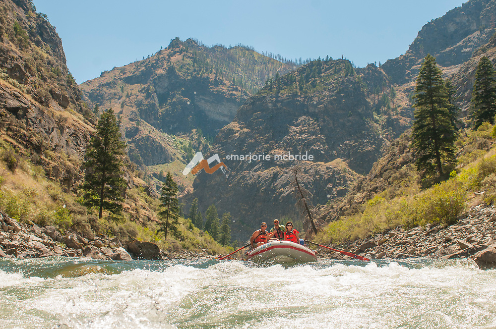 Oar boat above Weber in the Impassible Canyon on the Middle Fork of the Salmon River during six day rafting vacation, Idaho.