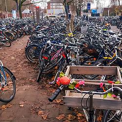 """Bicicleta (Veículo) fotografado na Alemanha, na Unição Européia - Europa. Registro feito em 2016.<br /> ⠀<br /> <br /> ENGLISH: Bicycle photographed in Germany, in European Union - Europe. Picture made in 2016."""