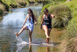 Licensed to London News Pictures. 09/06/2021. London, UK. Walkers cool off in a stream as they enjoy the warm weather in Richmond Park, southwest London today. Weather experts have forecast very warm weather for the South East and London this week with temperatures predicted to hit up to 30c at the weekend. Photo credit: Alex Lentati/LNP