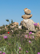 All along the Camino de Santiago there were piles of rocks made by the pilgrims. Here they are set amongst some bright early Summer wild flowers.