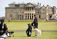 ST. ANDREWS -Schotland-GOLF. Old Course met clubhuis.  St. Andrews. Caddie met tas en hond. .  COPYRIGHT KOEN SUYK