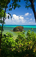 Yap, Micronesia, is home to clear waters, a healthy coral and shark population and manta rays. The culture is one of the most intact in Micronesia.