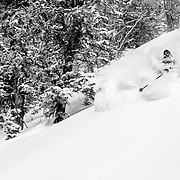 Powder discovery for Forrest Jillson.