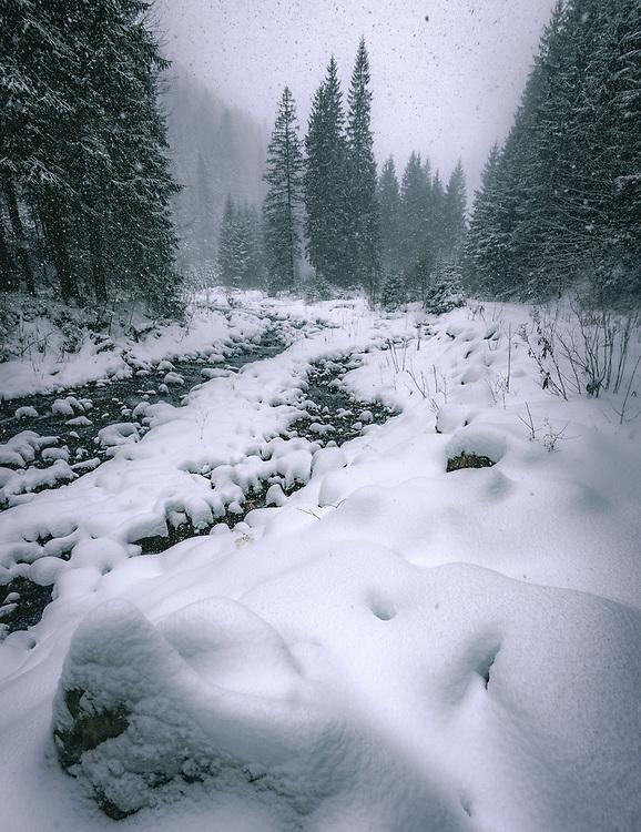 Carpathian Mountains<br /> Ukraine