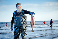 An old man holds up his fresh caught Coho salmon at the Cook Inlet near the mouth of the Kenai River, Alaska.