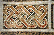 Picture of a Roman mosaics design depicting a geometric plant design, from the ancient Roman city of Thysdrus. 3rd century AD, House in Jiliani Guirat area. El Djem Archaeological Museum, El Djem, Tunisia. .<br /> <br /> If you prefer to buy from our ALAMY PHOTO LIBRARY Collection visit : https://www.alamy.com/portfolio/paul-williams-funkystock/roman-mosaic.html . Type - El Djem - into the LOWER SEARCH WITHIN GALLERY box. Refine search by adding background colour, place, museum etc<br /> <br /> Visit our ROMAN MOSAIC PHOTO COLLECTIONS for more photos to download as wall art prints https://funkystock.photoshelter.com/gallery-collection/Roman-Mosaics-Art-Pictures-Images/C0000LcfNel7FpLI