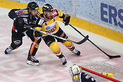 02.02.2016, Albert Schultz Eishalle, Wien, AUT, EBEL, UPC Vienna Capitals vs Dornbirner Eishockey Club, Platzierungsrunde, im Bild Kevin Macierzynski (Dornbirner EC) und Rafael Rotter (UPC Vienna Capitals) // during the Erste Bank Icehockey League placement round match between UPC Vienna Capitals and Dornbirner Eishockey Club at the Albert Schultz Ice Arena, Vienna, Austria on 2016/02/02. EXPA Pictures © 2016, PhotoCredit: EXPA/ Thomas Haumer