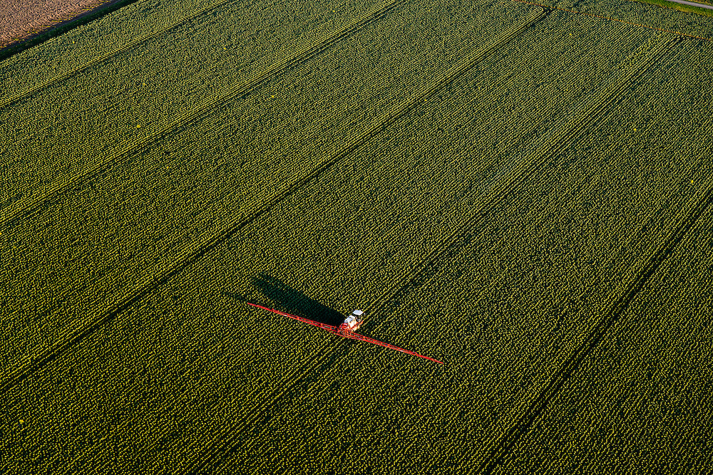 Nederland, Flevoland, 28-10-2014; sproeien van landbouwgewassen in de Flevopolder, grootschalige landbouw.<br /> Spraying of crops in the Flevopolder, large scale farming.<br /> luchtfoto (toeslag op standard tarieven); aerial photo (additional fee required); <br /> copyright foto/photo Siebe Swart