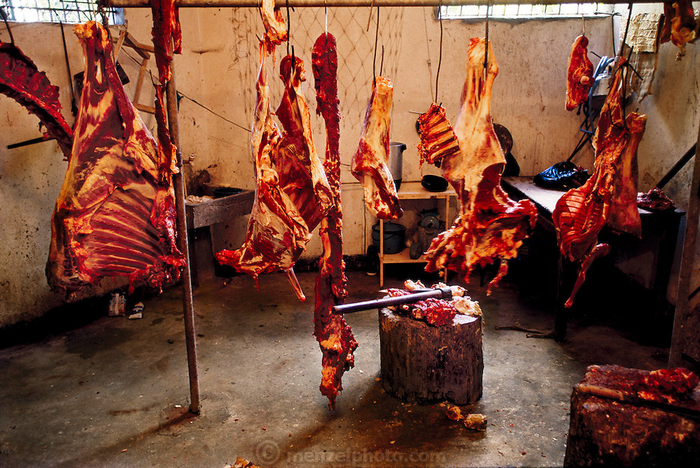 Beef for sale in the municipal market, Todos Santos, Guatemala. (From a photographic gallery of meat and poultry images, in Hungry Planet: What the World Eats, p. 165).