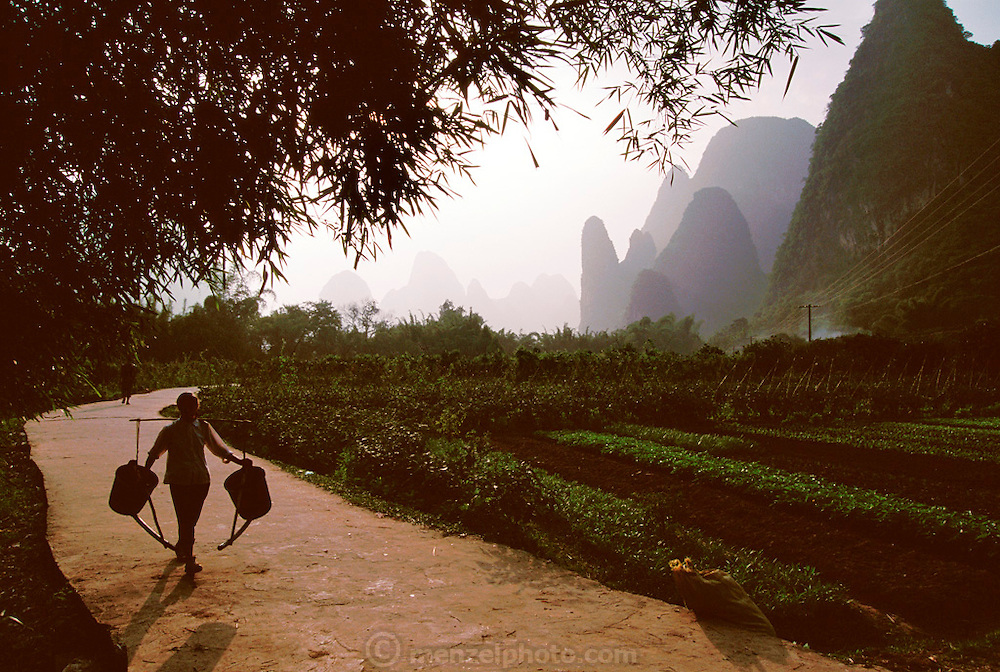A woman balancing buckets on her shoulders walks near Xingping town near Guilin, China on the Li River. Karst formations in background.