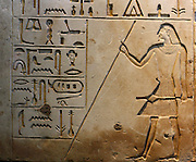 Tomb Slab of Neferseshempepy. Limestone, late Old Kingdom, about 2150 BC. From his tomb at Dendera. The slab bear an offering formula and some of Neferseshempepy's titles. He carries a stick of age or authority and a sceptre. The figure's thinness and the style of the hieroglyphs are typical of the late Old Kingdom.