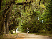 A young boy rides his horse under the Live Oaks of South Carolina.