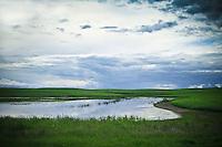 Gentle clouds float above prairie slough, Saskatchewan