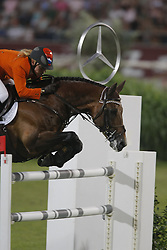 Hoorn Angelique (NED) - Blauwendraad's O'Brian<br /> CHIO Aachen 2009<br /> Photo © Hippo Foto