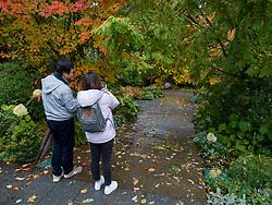 UniteUnited States, Washington, Bellevue, Bellevue Botanical Garden