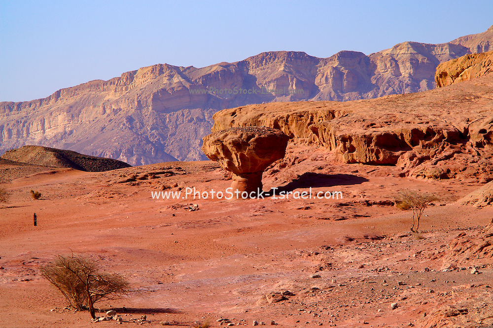 Mushroom Natural rock formation, Timna natural and historic park, Israel, The Timna Valley is located in the southwestern Arava, some 30 km. north of the Gulf of Eilat.