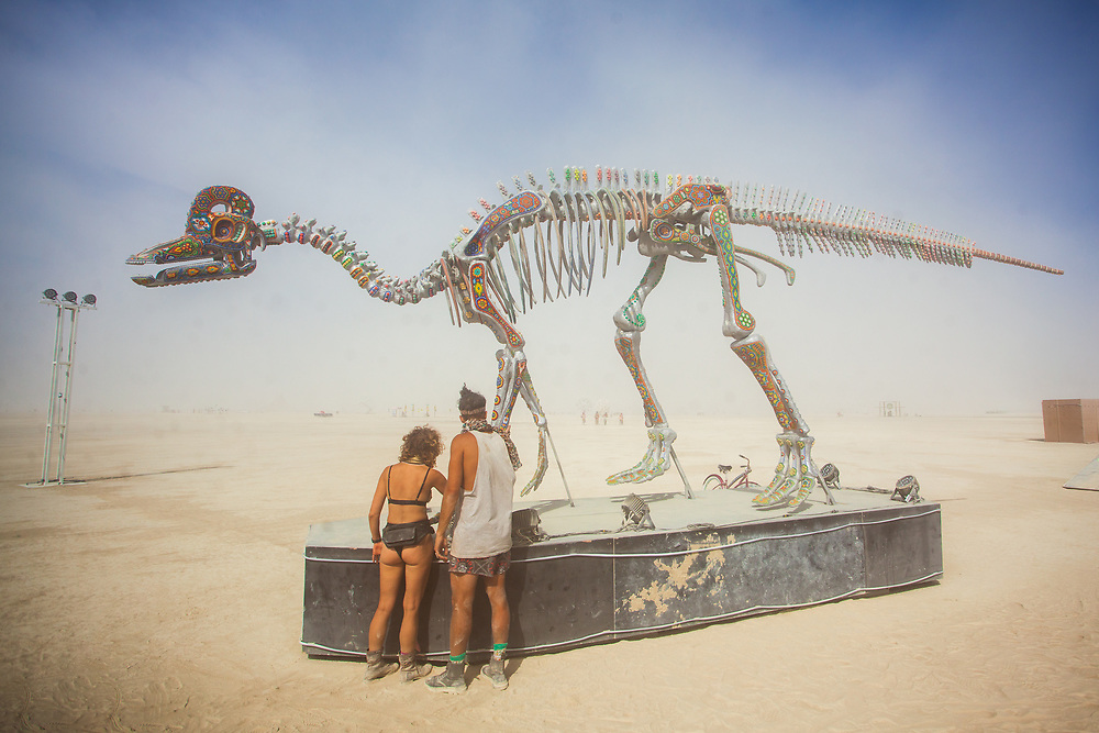 ICHIRO Sacred Beings by: Marianela Fuentes, Arturo Gonzalez and Sarahi Carrillo from: Mexico City, Mexico year: 2018<br /> <br /> The exact replica skeleton of the Velafrons Coahuilensis, a dinosaur from the Cretaceous period, 72 million years ago. The dinosaur will be decorated in the art of the Huichol, an indigenous tribe of Mexico who now lives in the same lands that once were populated by the Velafrons. Next to the Velafrons the head of a T-Rex with the same design. These visions also represent the flow of energy that exists within the human body and the universe. The dinosaur will be illuminated from all sides to be visible at night. Ichiro is a very emotional altar of ancient times on which there will be an original ritual every day at sunset, aiming at connecting with our ancestors and our inner self. Contact: marianellfu@gmail.com