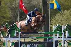 7 year old horses- 1 - Lummen 2017