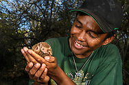The biologist Nicky Aina is holding a lesser hedgehog tenrec (Echinops telfairi), Tulear, Madagascar