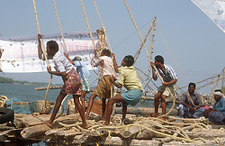 Chinese fishing nets at Cochin; Kerala; India; with men pulling ropes to lift net out of water,