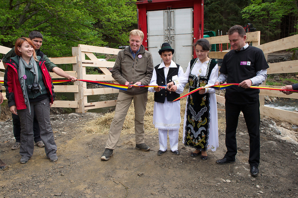 Frans Schepers from Rewilding Europe, two village children and Armenis Mayor Petru Vela, doing the official ribbon-cutting ceremony at the release of European bison, Bison bonasus, in the Tarcu mountains nature reserve, Natura 2000 area, Southern Carpathians, Romania. The release was actioned by Rewilding Europe and WWF Romania in May 2014.